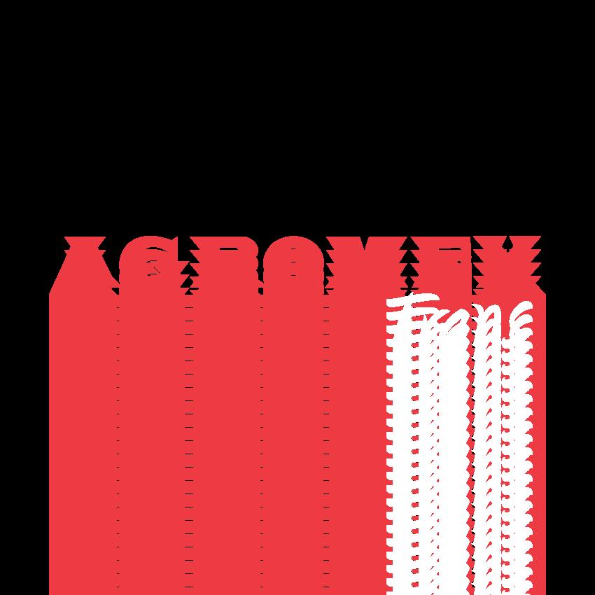 Agromex - spedycja, transport krajowy i międzynarodowy